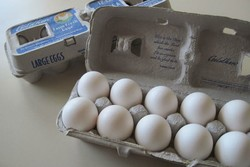 آنفلوآنزای حاد پرندگان مهار شد/ ادامه روند کاهش قیمت تخم مرغ