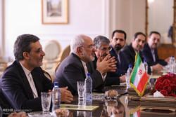 ظريف : صداقة ايران مع دول الجوار خيار استراتيجي