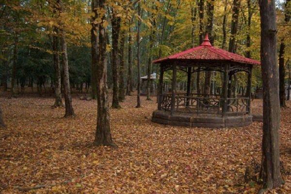 اعلام آمادگی اتریشیها برای احداث پارک جنگلی در نمین