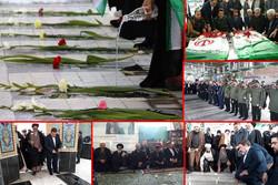 تهرانی ها میهمان لاله ها شدند/گلباران ۲۵۰مزار شهدا در استان تهران