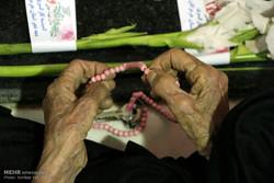 میهمانی لاله ها در سراسر استان تهران برگزار شد