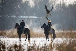 منافسات الصيد بالعقاب في كازاخستان /الصور