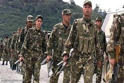 عملیات ضد تروریستی نیروهای امنیتی الجزایر