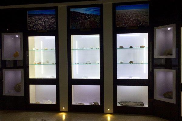 گشتی در موزه ژئوپارک طبس/ از گیاهان فسیلی تا ستارههای سنگی