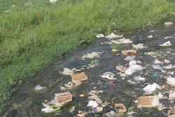 شکل گیری تالاب فاضلاب در جنوب شهر دهلران/سلامت مردم در خطر است