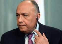 Egyptian FM