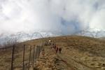 صعود به نغل برای جستجوی هواپیمای یاسوج