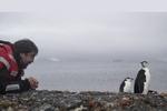 خاویر باردم پناهگاهش را پیدا کرد/ زندگی با پنگوئنها