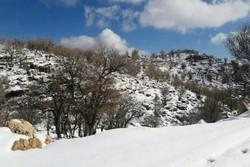 گرفتار شدن یک گروه گردشگری در جاده برفگیر سالند دزفول