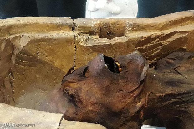 عرض مومياء عجيب في متحف القاهرة