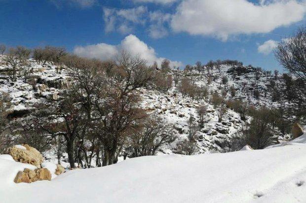 تعدادی از گردشگران گرفتار شده در ارتفاعات برفی سالند نجات یافتند