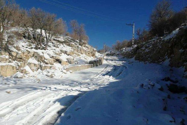 ۳ نفر از عشایر مفقود شده در برف پیدا شدند