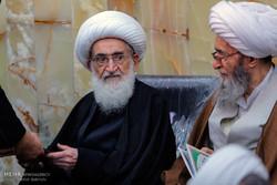 مرحوم آیت اللہ فاضل لنکرانی کی برسی میں علماء اور مراجع عظام کی شرکت