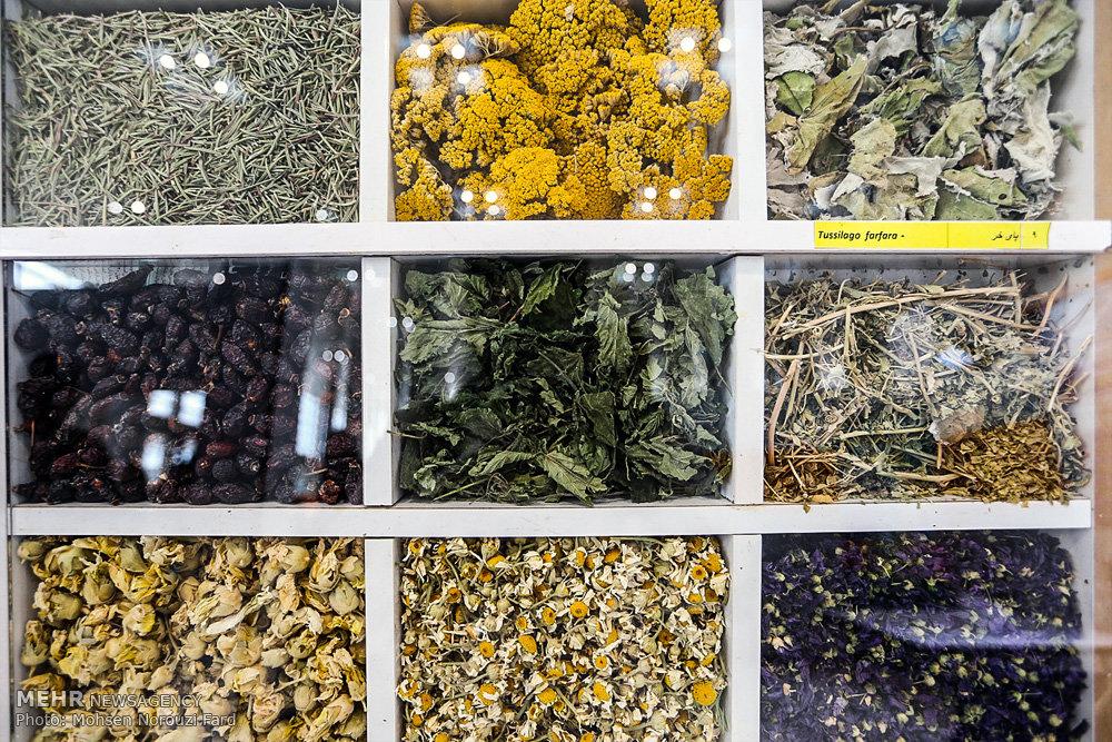 توضیح سازمان غذا و دارو درباره داروهای گیاهی درمان کرونا