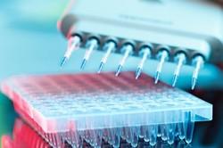 فاز دوم سلول درمانی بیماران کرونایی در کشور آغاز شد/ اعلام نتایج تا ۲ هفته آینده