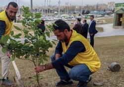 """منطقه۲۱ به استقبال """"هفته درختکاری"""" رفت/افتتاح بوستان مشارکتی صنعت"""