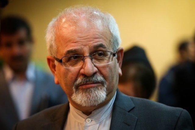 Security of Persian Gulf states intertwined: Iranian diplomat