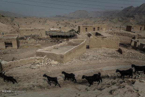 تعداد خانوار ساکن در روستاهای مناطق تنگخون و ارغون به کمتر از انگشتان یک دست رسیده و برخی روستاها تنها با یک خانواده زنده ماندهاند.