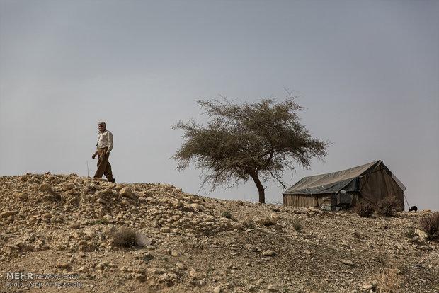 مردی از اهالی روستای تنگخون در کنار چادری که محل زندگی او است، قدم میزند. شغل بیشتر مردان روستایی کشاورزی و دامداری بود که در سالهای اخیر جای خود را به دامداری محدود و چوپانی داده است. بیشتر مردان مهاجر در روستاها و شهرهای نزدیک به کارگری و بازیاری مشغول هستند.