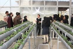 دانشجویان کشاورزی
