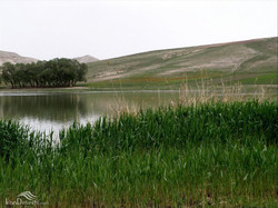 Qori-Gol wetland, a protected area in northwestern Iran