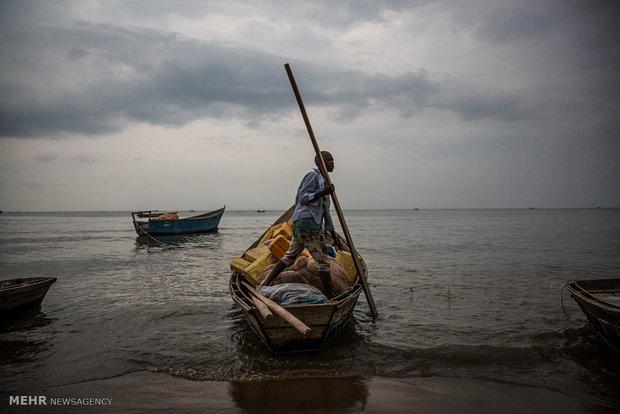 فرار کنگویی ها به اوگاندا