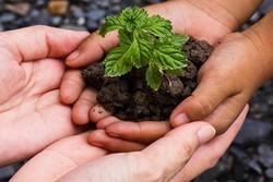 تدوین برنامه دفتر مشارکت مردمی سازمان محیط زیست برای سال ۹۷