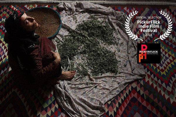 'Forouzan' to vie at PickurFlick Indie Filmfest.