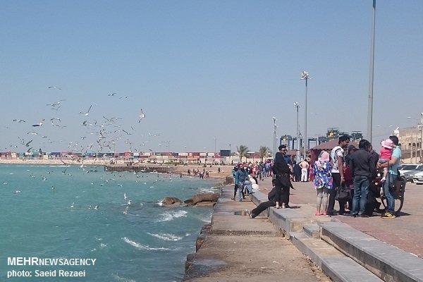 ساحل بوشهر گردشگری دریایی