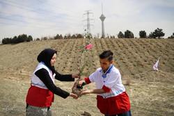الهلال الأحمر الايراني يزرع شتلات بمناسبة يوم التشجير / صور