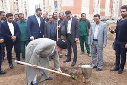 ۸۰۰۰ اصله نهال در شهر محمدیه غرس شد