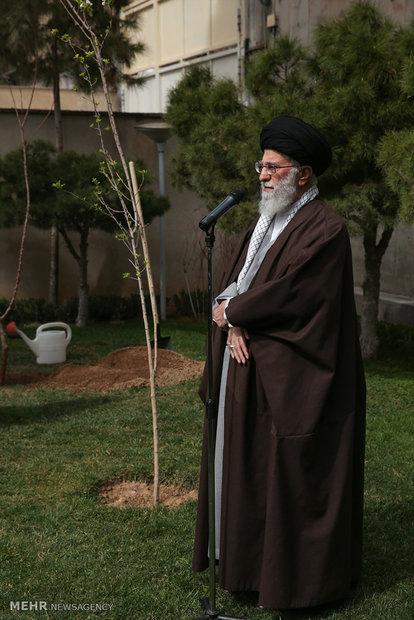 رقائد الثورة الاسلامية يغرس شتلة في أسبوع المصادر الطبيعية