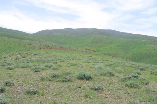 اجرای پروژههای بیولوژیکی با اعتبار ۱۵۰۰ میلیون تومان در زنجان