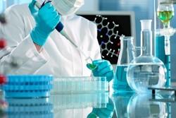 وضعیت پژوهشی خوب نیست/ورود محصولات دانش بنیان به بازار