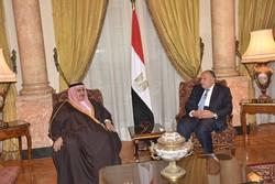وزرای خارجه مصر و بحرین