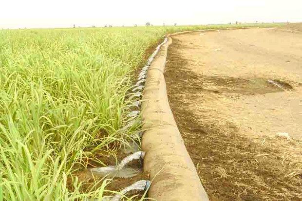 حل اختلاف کشاورزان و منابع طبیعی در ابهام/لزوم پیگیری مطالبه مردم