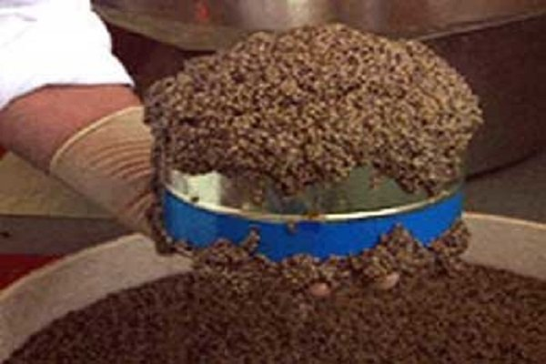 Iran's farmed caviar hits 5 tons in production, 1.2 in exports in 2017