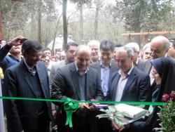 نمایشگاه منابع طبیعی در خانه طبیعت گرگان افتتاح شد