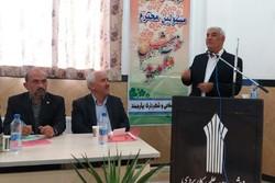 شوراهای اسلامی در جایگاه اصلی خود قرار ندارند