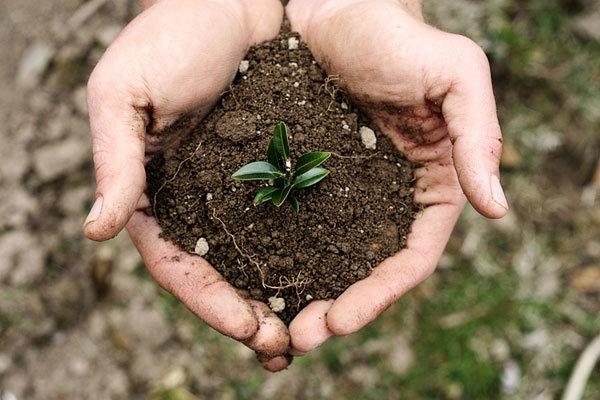 قانون جامع خاک ۱۲ سال در مجلس خاک می خورد