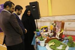 اختتامیه جشنواره «تزئین سفره های هفت سین» در گرگان برگزار شد