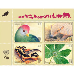 Kaiser's mountain newt among 25th edition of UN endangered species stamps