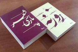روزنه و شعر فارسی