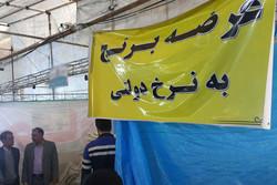 ۸۵ تن برنج وارداتی و ۶۰۰ کارتن تخم مرغ در اسلامشهر توزیع می شود