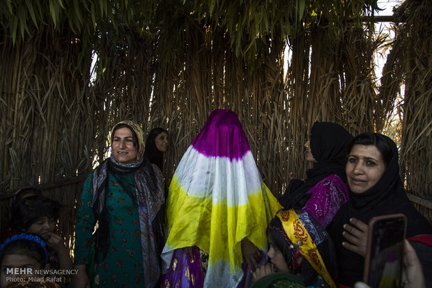 بازسازی عروسی سنتی در شهرستان جم
