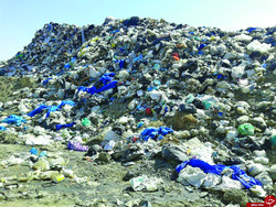 Tehran's waste production twice other cities: councilor