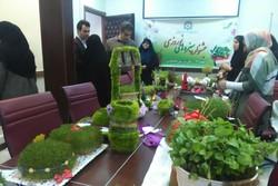 جشنواره سبزههای نوروزی در گرگان به کار خود پایان داد