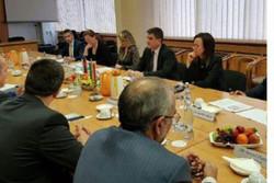 Iranian MPs talk welfare with Austrian, Slovakian counterparts