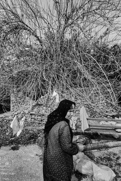مادران دشت و دریا