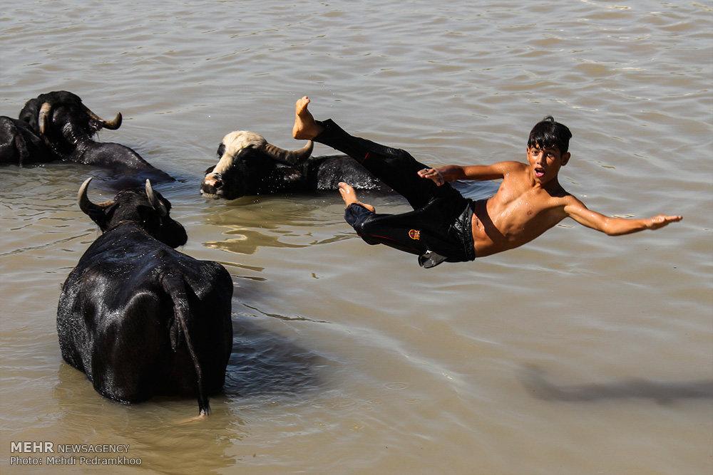 مهمترین رویداد های خبری سال ۹۶ به روایت عکاسان خبرگزاری مهر -۱